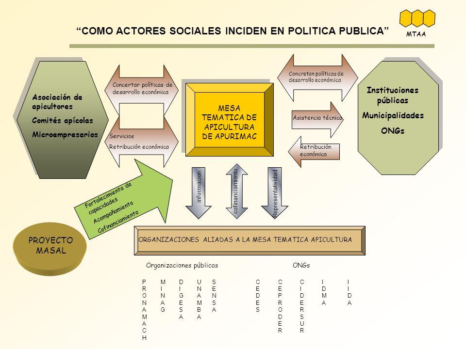 MESA TEMATICA DE APICULTURA DE APURIMAC Fortalecimiento de capacidades Acompañamiento Cofinanciamiento PROYECTO MASAL informacion Representatividad co