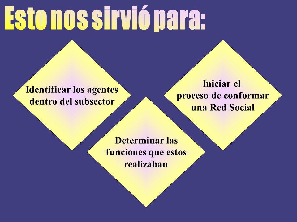 Identificar los agentes dentro del subsector Iniciar el proceso de conformar una Red Social Determinar las funciones que estos realizaban