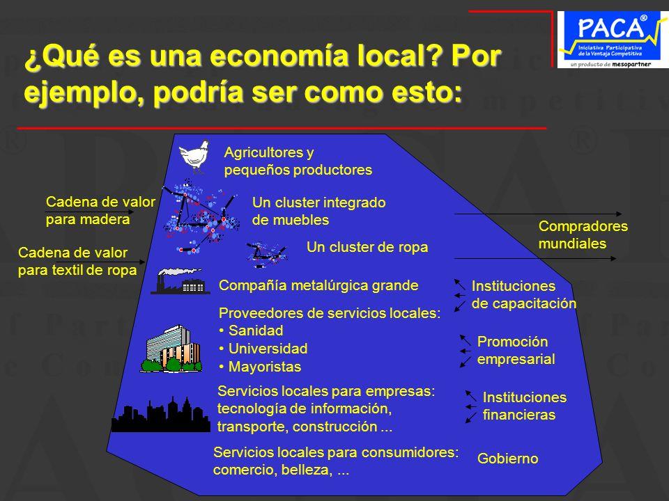 ¿Qué es una economía local? Por ejemplo, podría ser como esto: Un cluster integrado de muebles Un cluster de ropa Compañía metalúrgica grande Proveedo