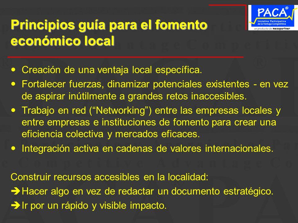 Principios guía para el fomento económico local Creación de una ventaja local específica. Fortalecer fuerzas, dinamizar potenciales existentes - en ve
