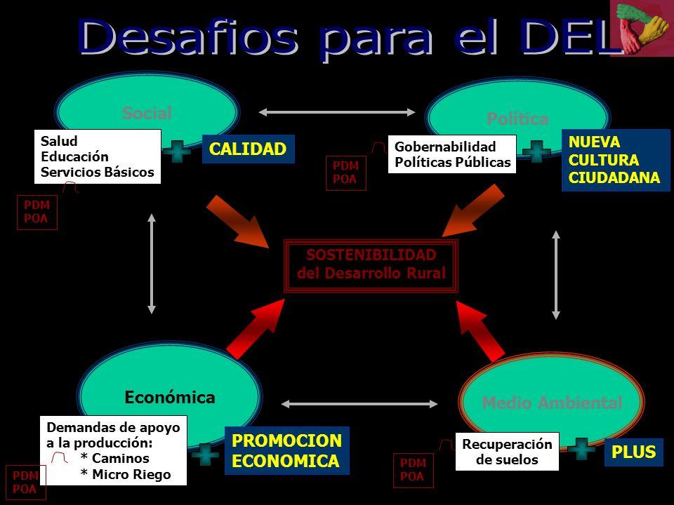 Social Económica SOSTENIBILIDAD del Desarrollo Rural EQUIDAD RENTABILIDAD Salud Educación Servicios Básicos Demandas de apoyo a la producción: * Camin