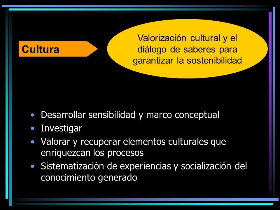 Desarrollar sensibilidad y marco conceptual Investigar Valorar y recuperar elementos culturales que enriquezcan los procesos Sistematización de experi