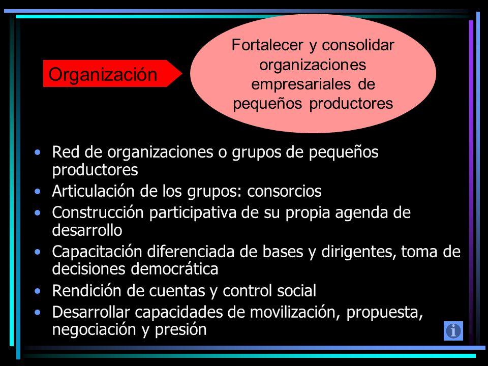 Red de organizaciones o grupos de pequeños productores Articulación de los grupos: consorcios Construcción participativa de su propia agenda de desarr