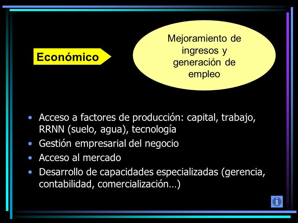 Acceso a factores de producción: capital, trabajo, RRNN (suelo, agua), tecnología Gestión empresarial del negocio Acceso al mercado Desarrollo de capa
