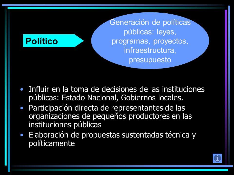 Influir en la toma de decisiones de las instituciones públicas: Estado Nacional, Gobiernos locales. Participación directa de representantes de las org
