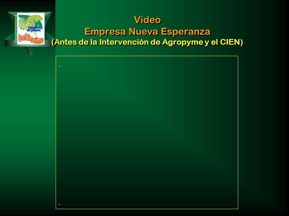 Video Empresa Nueva Esperanza (Antes de la Intervención de Agropyme y el CIEN)....