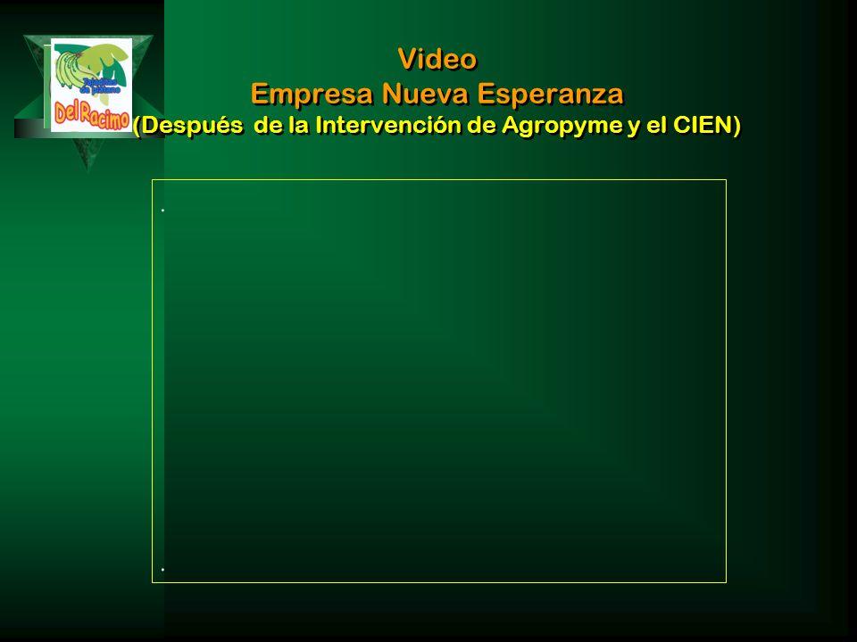 Video Empresa Nueva Esperanza (Después de la Intervención de Agropyme y el CIEN)....