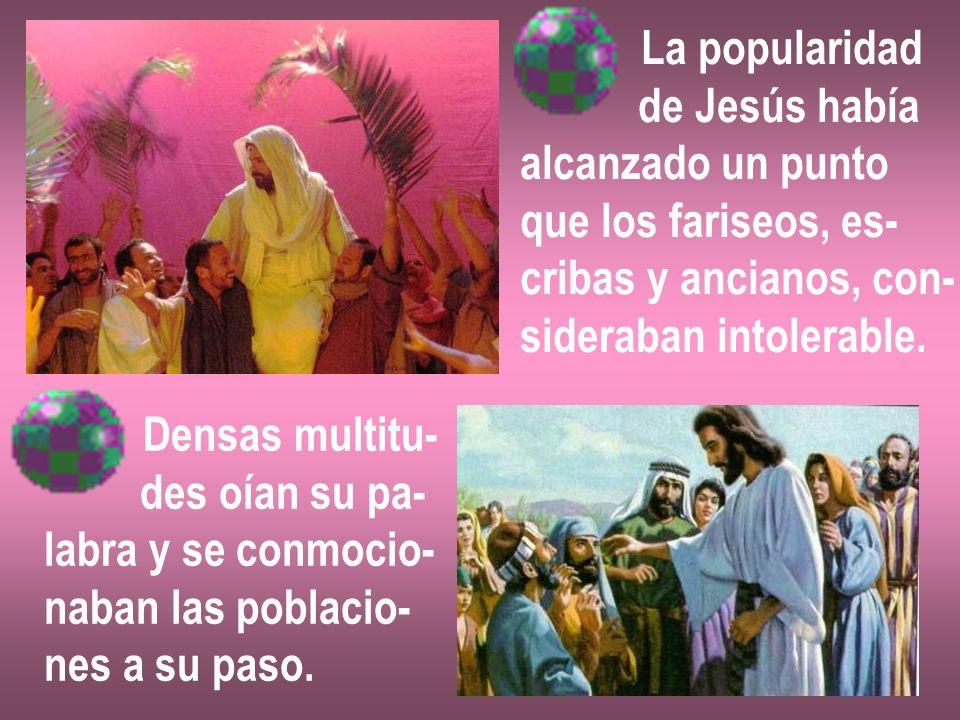 La popularidad de Jesús había alcanzado un punto que los fariseos, es- cribas y ancianos, con- sideraban intolerable. Densas multitu- des oían su pa-