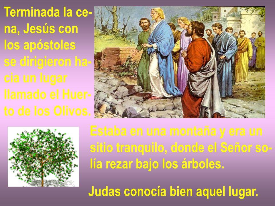Terminada la ce- na, Jesús con los apóstoles se dirigieron ha- cia un lugar llamado el Huer- to de los Olivos. Estaba en una montaña y era un sitio tr