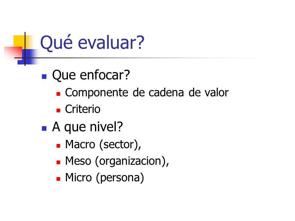 Qué evaluar? Que enfocar? Componente de cadena de valor Criterio A que nivel? Macro (sector), Meso (organizacion), Micro (persona)