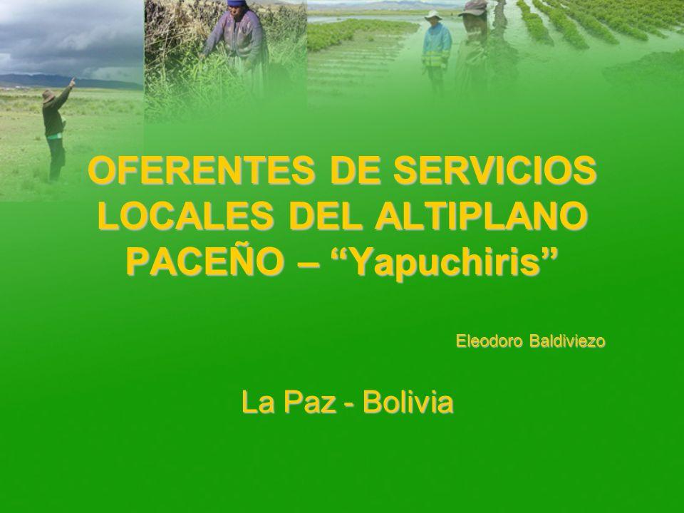 OFERENTES DE SERVICIOS LOCALES DEL ALTIPLANO PACEÑO – Yapuchiris Eleodoro Baldiviezo La Paz - Bolivia