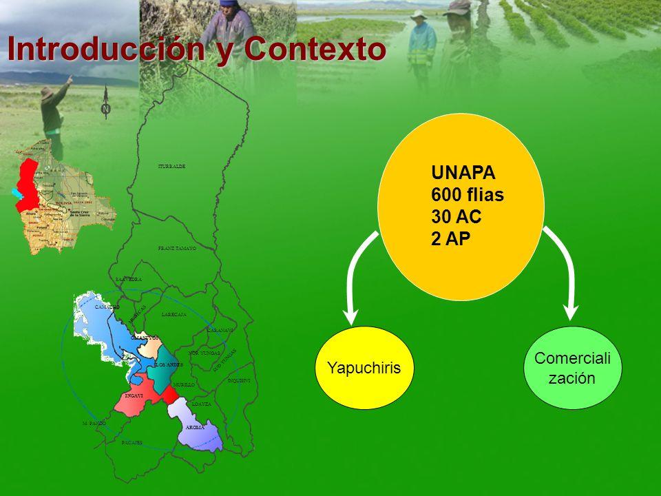 Introducción y Contexto Proceso de desestructuración de estrategias productivas campesinas en el Altiplano Parcelación y minifundio: rompe lógica de manejo espacial del suelo.