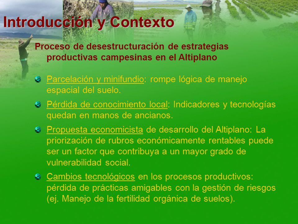 Introducción y Contexto Proceso de desestructuración de estrategias productivas campesinas en el Altiplano Parcelación y minifundio: rompe lógica de m