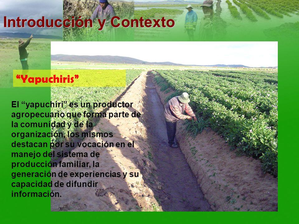 El yapuchiri es un productor agropecuario que forma parte de la comunidad y de la organización, los mismos destacan por su vocación en el manejo del s