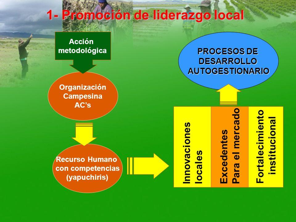 PROCESOS DE DESARROLLOAUTOGESTIONARIO 1- Promoción de liderazgo local Organización Campesina ACs Recurso Humano con competencias (yapuchiris) Acción m