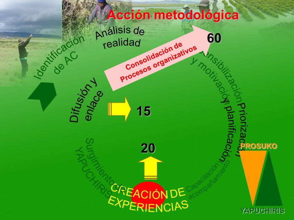 Consolidación de Procesos organizativos Acción metodológica PROSUKOYAPUCHIRIS 20 15 60
