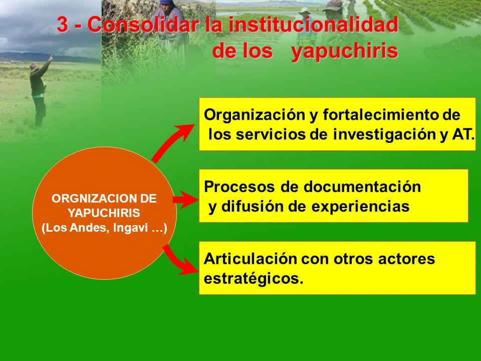 3 - Consolidar la institucionalidad de los yapuchiris ORGNIZACION DE YAPUCHIRIS (Los Andes, Ingavi …) Organización y fortalecimiento de los servicios