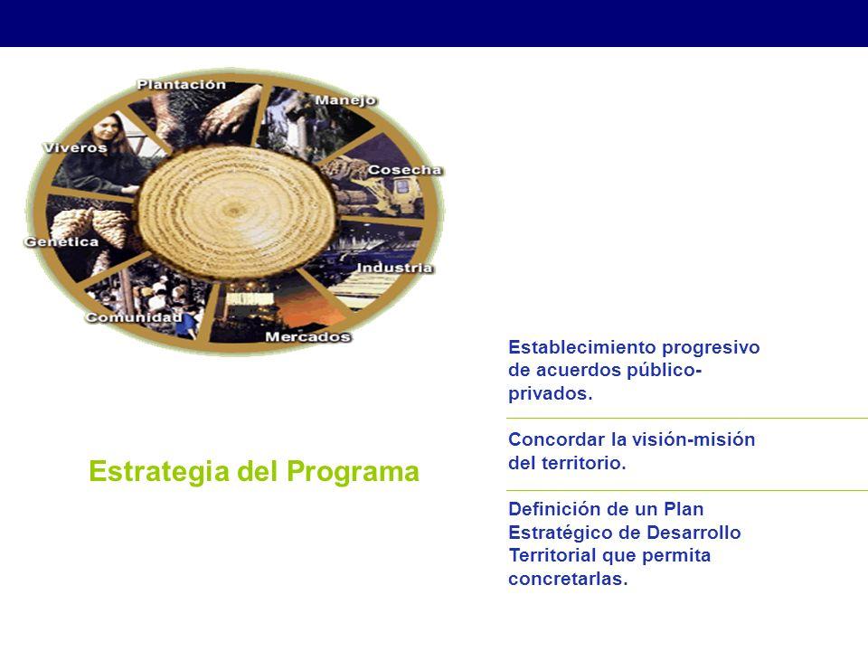 Estrategia del Programa Establecimiento progresivo de acuerdos público- privados.