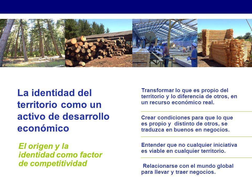 La identidad del territorio como un activo de desarrollo económico El origen y la identidad como factor de competitividad Transformar lo que es propio del territorio y lo diferencia de otros, en un recurso económico real.