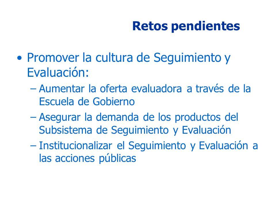 Retos pendientes Promover la cultura de Seguimiento y Evaluación: –Aumentar la oferta evaluadora a través de la Escuela de Gobierno –Asegurar la demanda de los productos del Subsistema de Seguimiento y Evaluación –Institucionalizar el Seguimiento y Evaluación a las acciones públicas