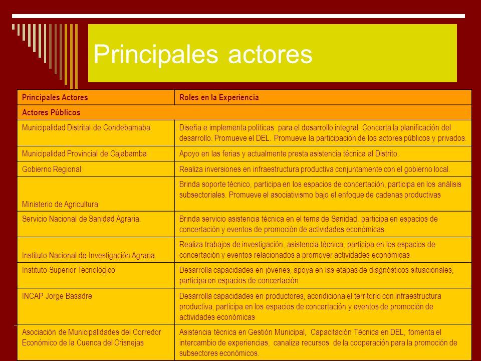24 Principales actores Principales ActoresRoles en la Experiencia Actores Públicos Municipalidad Distrital de CondebamabaDiseña e implementa políticas