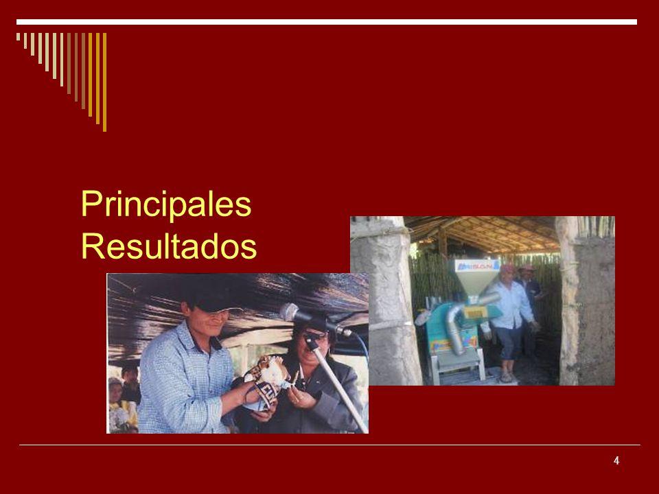 35 Ser un municipio docente en DEL en la estrategia de Municipio Escuela de Red de Municipales Rurales del Perú.