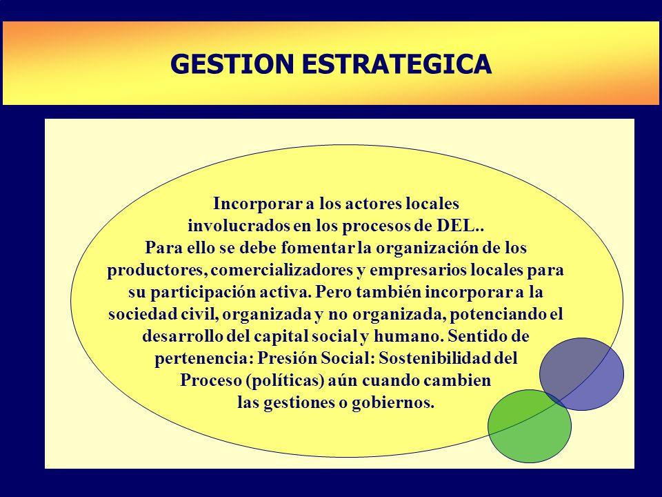 PLAN DE DESARROLLO DE CAPACIDADES GESTION ESTRATEGICA Incorporar a los actores locales involucrados en los procesos de DEL.. Para ello se debe fomenta
