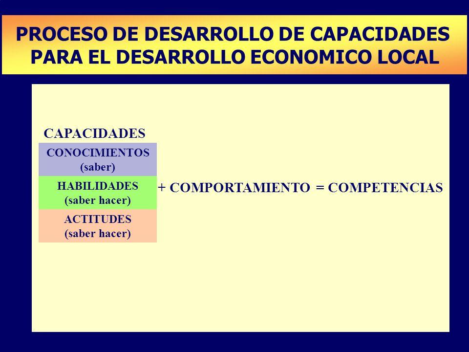 PLAN DE DESARROLLO DE CAPACIDADES PROCESO DE DESARROLLO DE CAPACIDADES PARA EL DESARROLLO ECONOMICO LOCAL CONOCIMIENTOS (saber) HABILIDADES (saber hac