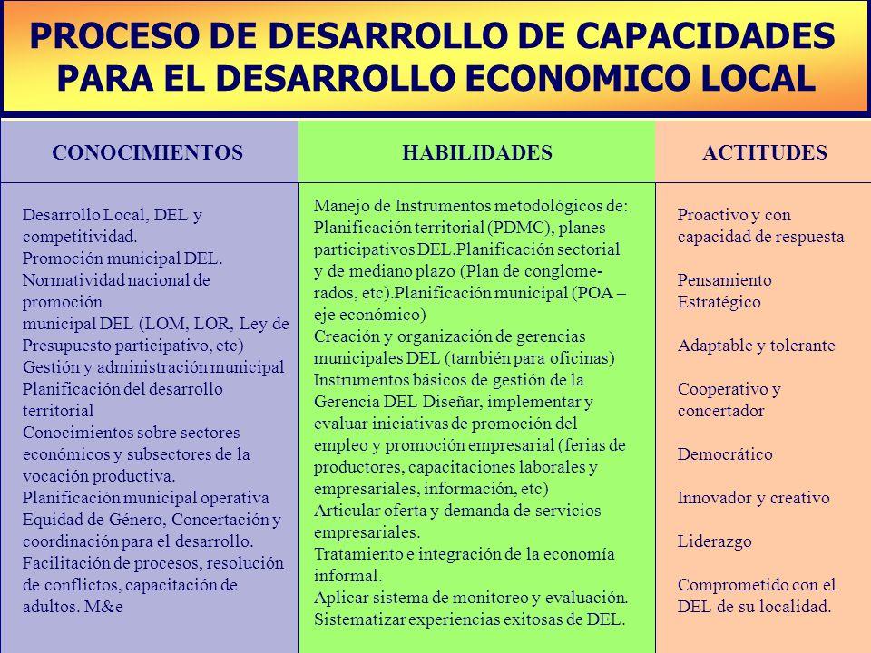 PLAN DE DESARROLLO DE CAPACIDADES PROCESO DE DESARROLLO DE CAPACIDADES PARA EL DESARROLLO ECONOMICO LOCAL CONOCIMIENTOSHABILIDADESACTITUDES Desarrollo