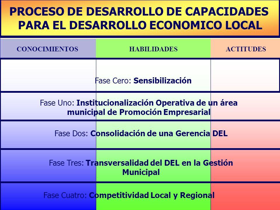 PLAN DE DESARROLLO DE CAPACIDADES PROCESO DE DESARROLLO DE CAPACIDADES PARA EL DESARROLLO ECONOMICO LOCAL CONOCIMIENTOSHABILIDADESACTITUDES Fase Cero:
