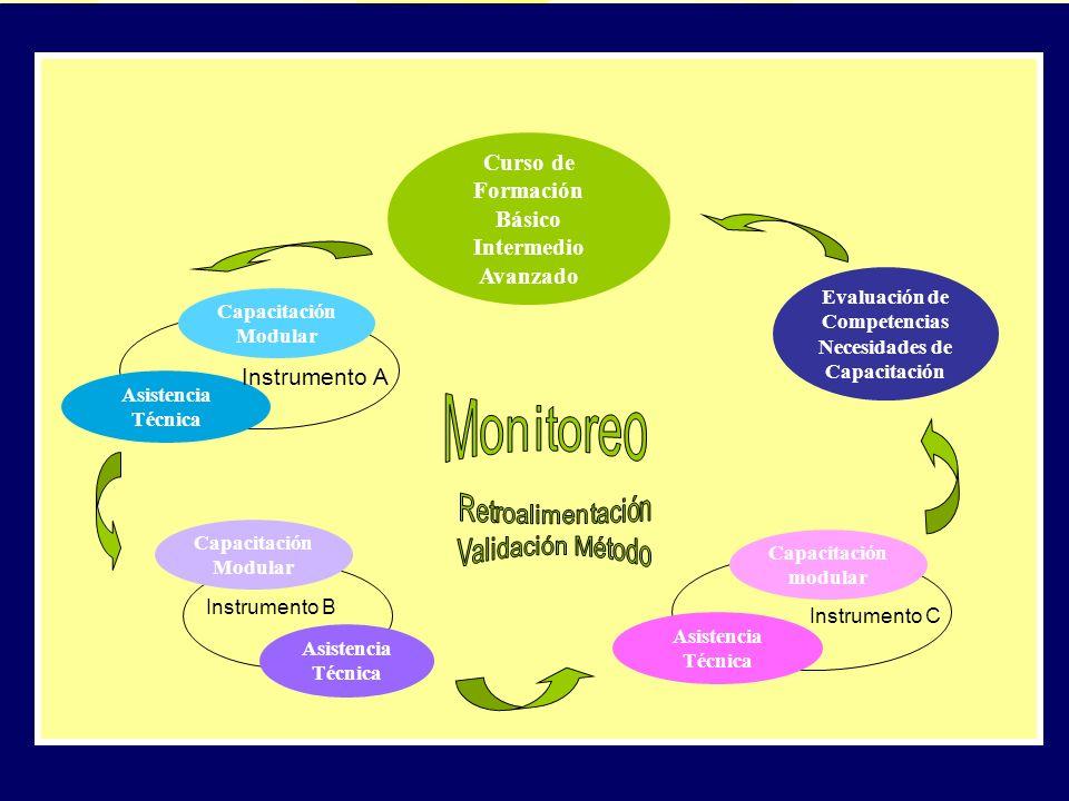 PLAN DE DESARROLLO DE CAPACIDADES Evaluación de Competencias Necesidades de Capacitación Curso de Formación Básico Intermedio Avanzado Capacitación Mo
