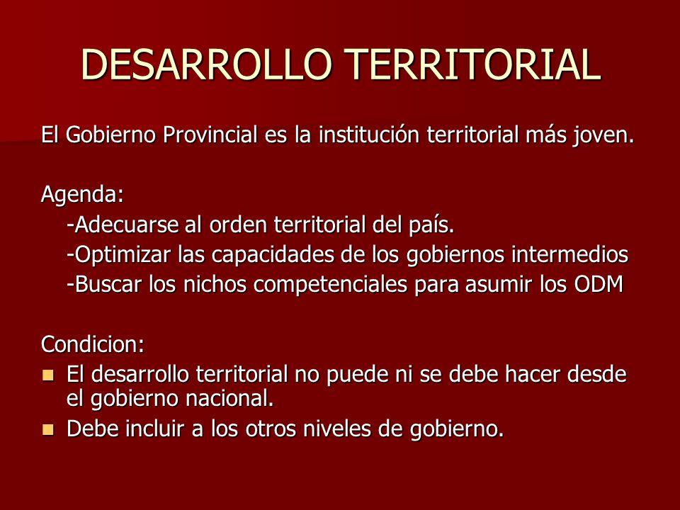 DESARROLLO TERRITORIAL El Gobierno Provincial es la institución territorial más joven.