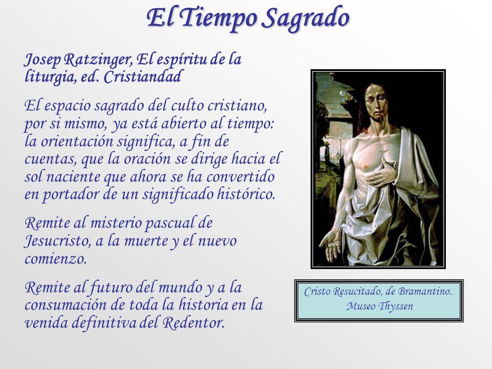 Color azul Este color se usa donde lo permite el privilegio español, en la fiesta de la Inmaculada Concepción.