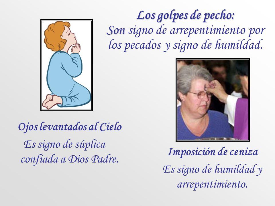 Algunos gestos litúrgicos La señal de la Cruz Es como un sello de Cristo, una profesión de fe. También se usa para bendecir personas y cosas. Se alza