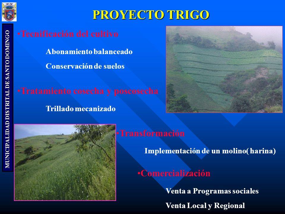 MUNICIPALIDAD DISTRITAL DE SANTO DOMINGO PROYECTO TRIGO Tecnificación del cultivo Abonamiento balanceado Conservación de suelos Tratamiento cosecha y