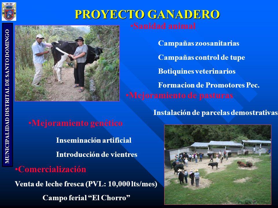 MUNICIPALIDAD DISTRITAL DE SANTO DOMINGO RIEGO Mejoramiento del sistema de riego Mejoramiento de infraestructura (canales, bocatomas y reservorios) Organización de los Usuarios.