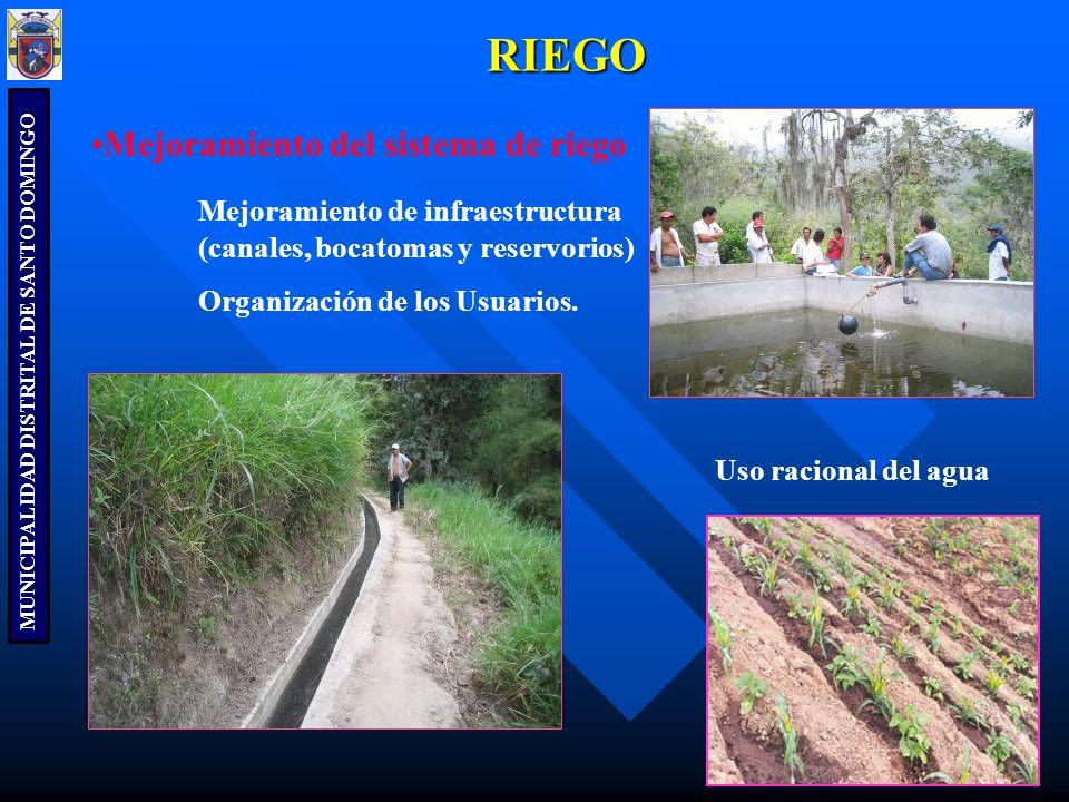MUNICIPALIDAD DISTRITAL DE SANTO DOMINGO RIEGO Mejoramiento del sistema de riego Mejoramiento de infraestructura (canales, bocatomas y reservorios) Or