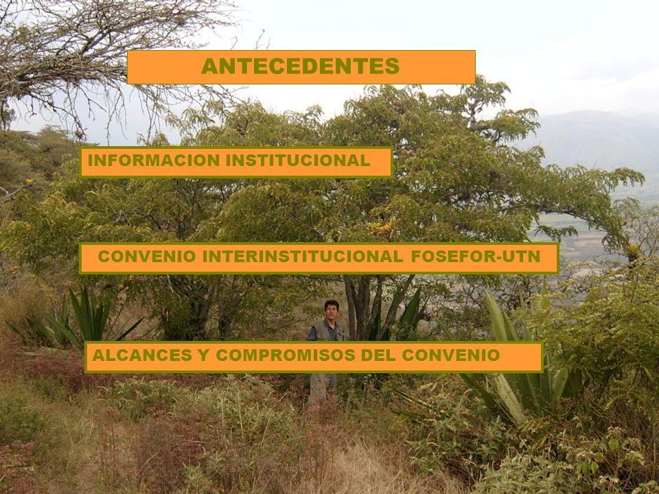 INFORMACION INSTITUCIONAL CONVENIO INTERINSTITUCIONAL FOSEFOR-UTN ANTECEDENTES ALCANCES Y COMPROMISOS DEL CONVENIO