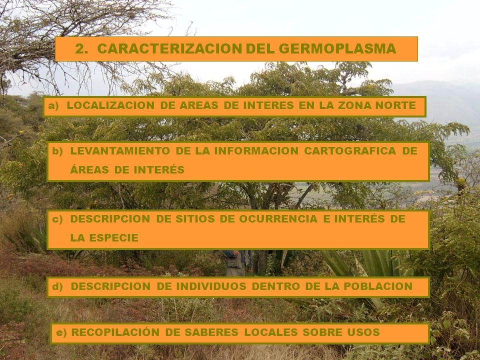 a)ELABORAR FICHAS ESTANDARIZADAS PARA RECOLECCIÓN DE GERMOPLASMA b)DEFINIR AREAS DE RECOLECCION 3.