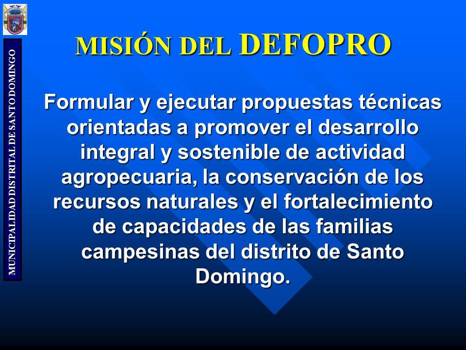 MUNICIPALIDAD DISTRITAL DE SANTO DOMINGO Formular y ejecutar propuestas técnicas orientadas a promover el desarrollo integral y sostenible de activida