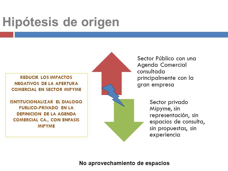 Hipótesis de origen Sector Público con una Agenda Comercial consultada principalmente con la gran empresa Sector privado Mipyme, sin representación, s