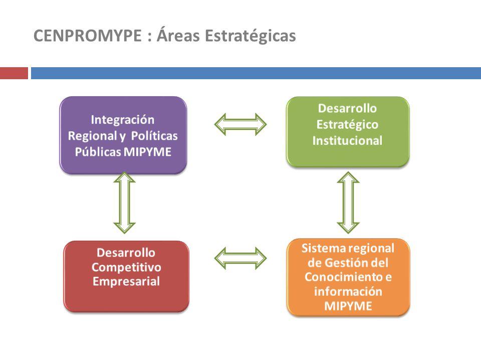 CENPROMYPE : Áreas Estratégicas