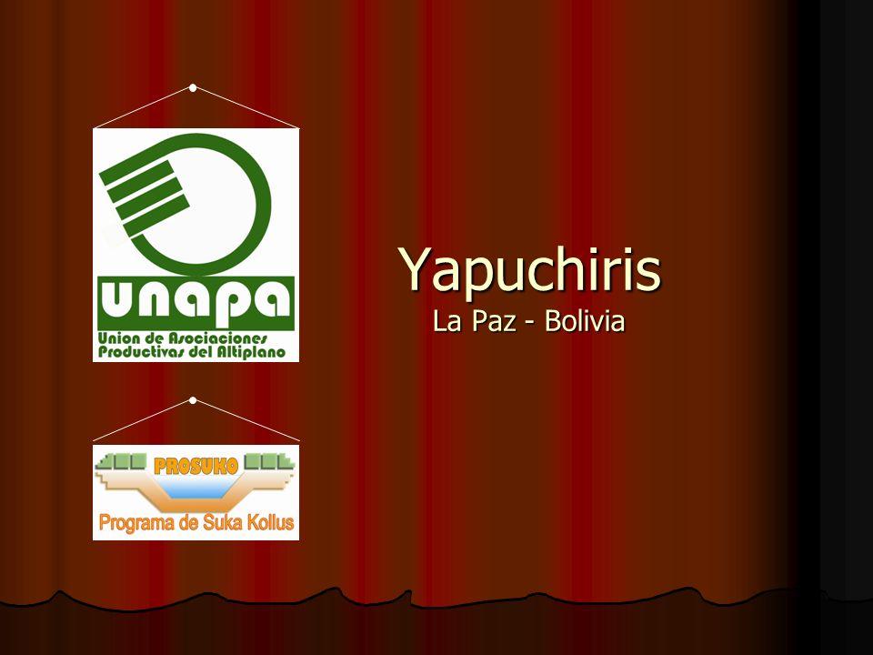 Yapuchiris La Paz - Bolivia