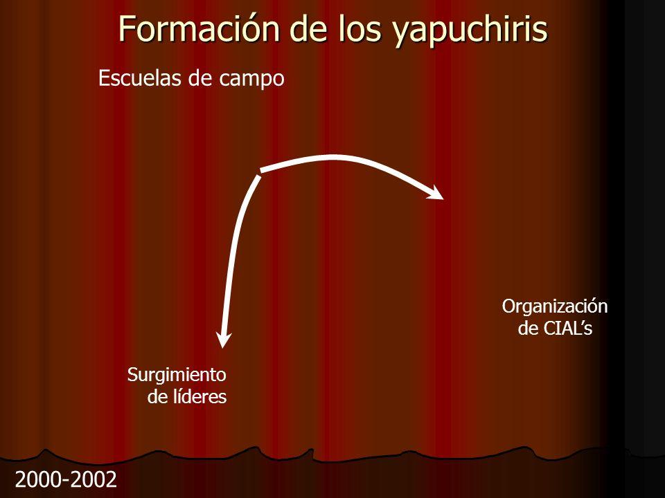 Formación de los yapuchiris Escuelas de campo Surgimiento de líderes Organización de CIALs 2000-2002