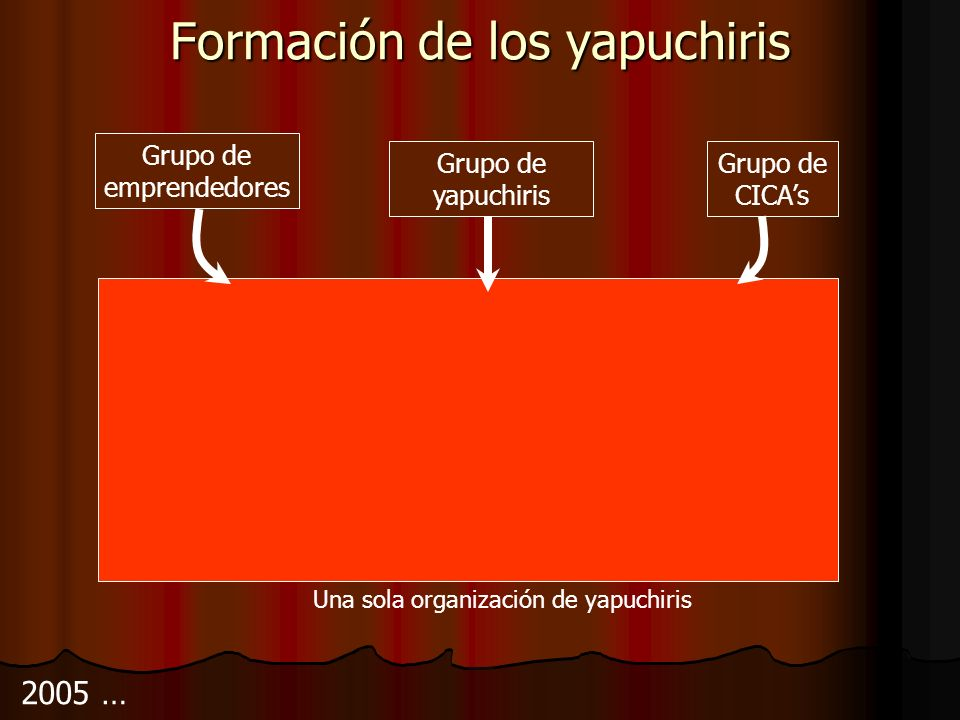 Formación de los yapuchiris 2005 … Grupo de CICAs Grupo de emprendedores Grupo de yapuchiris Una sola organización de yapuchiris