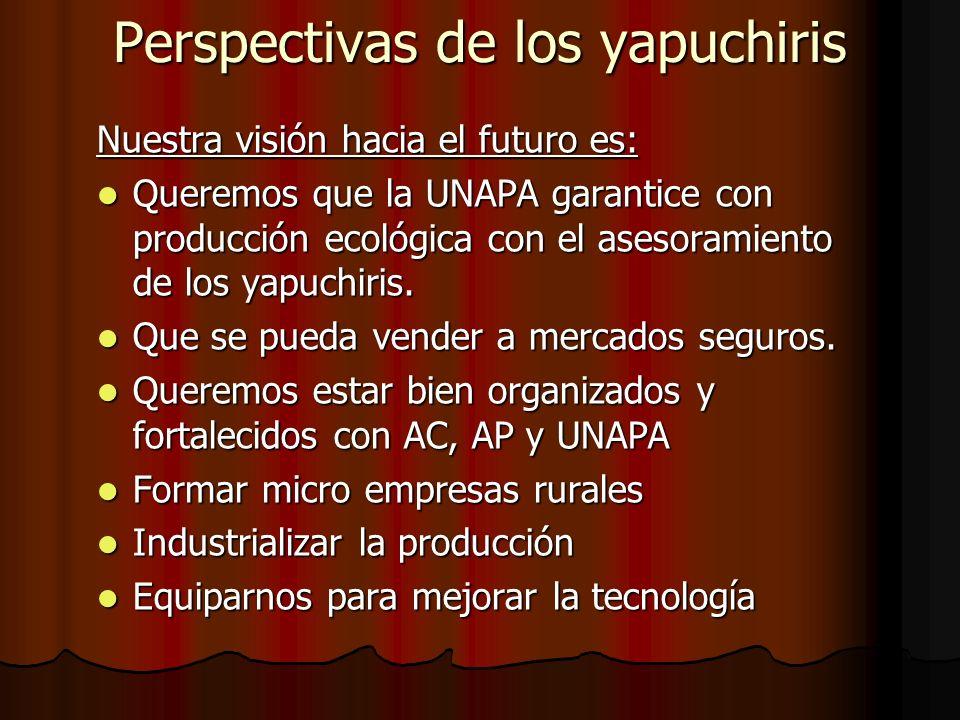 Perspectivas de los yapuchiris Nuestra visión hacia el futuro es: Queremos que la UNAPA garantice con producción ecológica con el asesoramiento de los yapuchiris.