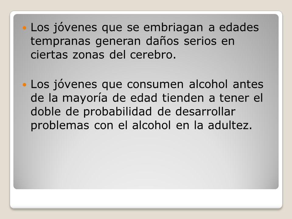 Los jóvenes que se embriagan a edades tempranas generan daños serios en ciertas zonas del cerebro. Los jóvenes que consumen alcohol antes de la mayorí