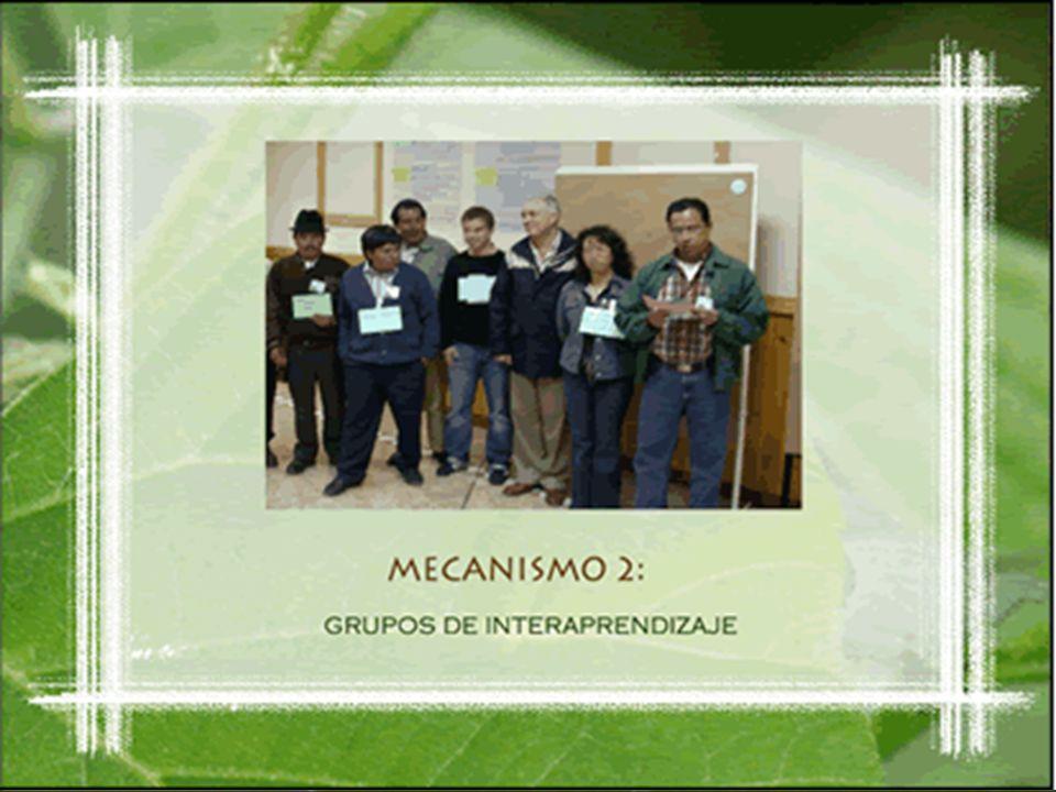 Mecanismo 2: Grupos de Interaprendizaje