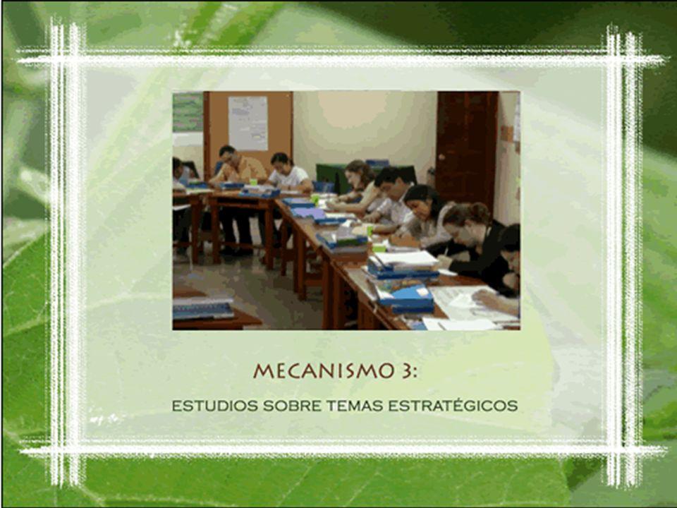 Modalidad 3 Estudios sobre Temas Estratégicos