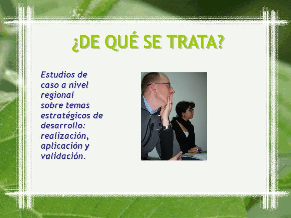 Estudios de caso a nivel regional sobre temas estratégicos de desarrollo: realización, aplicación y validación.